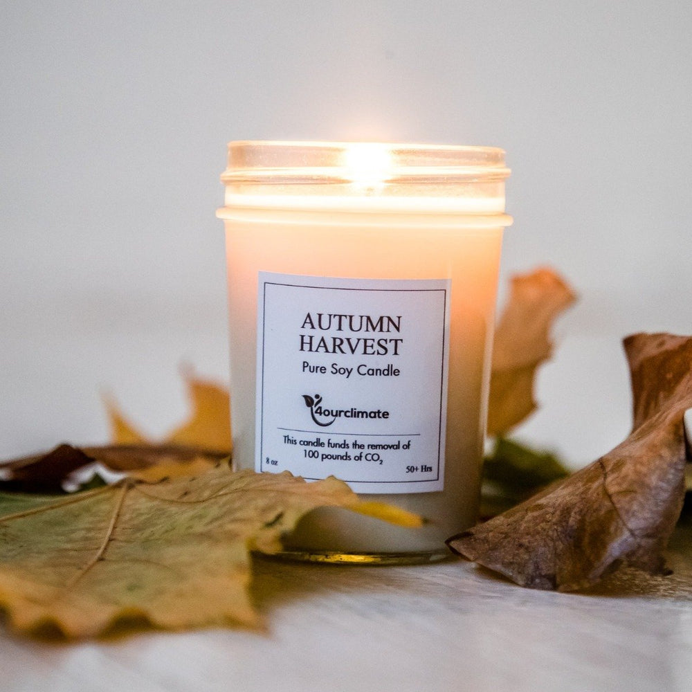 Autumn Harvest Soy Candle - 8 oz, 50+ hours of Clean Burning