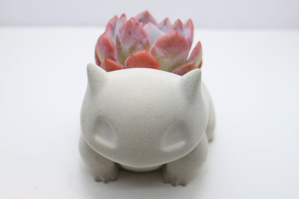 Bulbasaur (small)