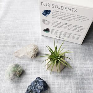 Load image into Gallery viewer, STUDENT Crystal Gift Set ($60 value)