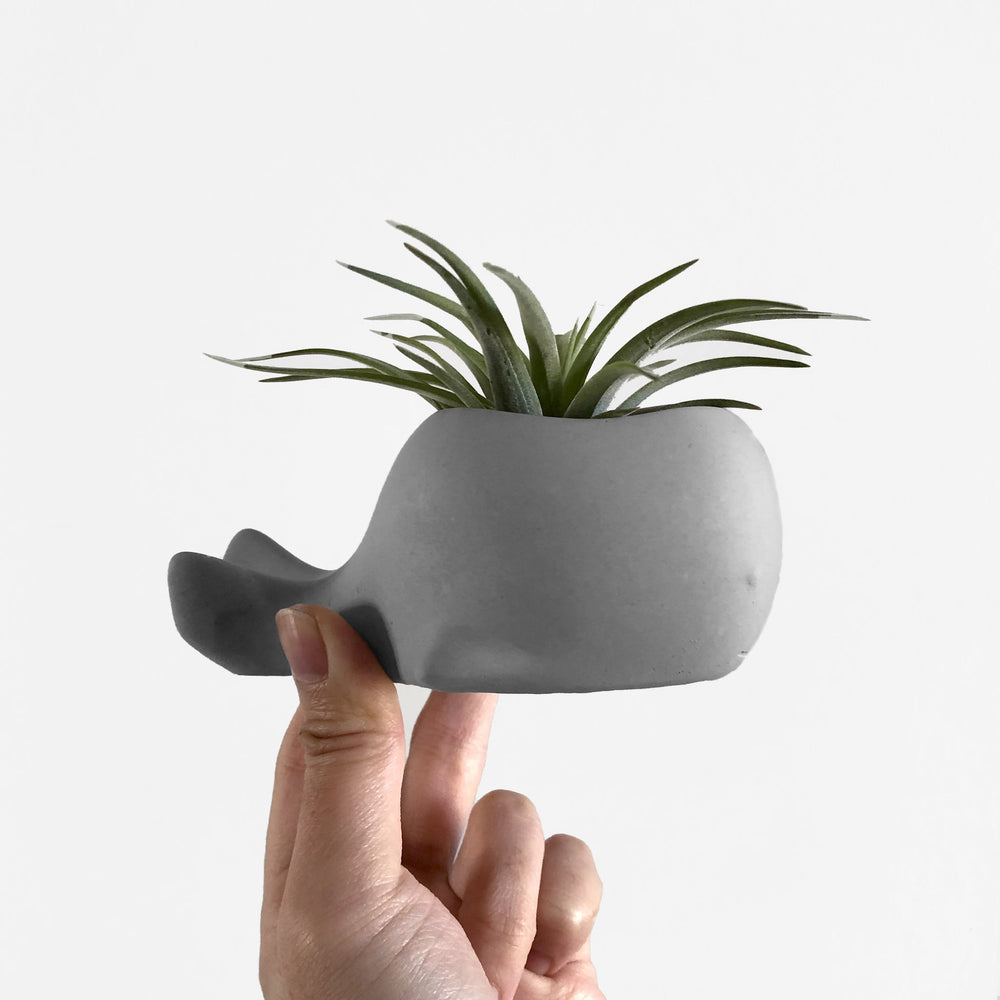 Load image into Gallery viewer, Cement Whale Planter