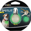 spotlit dog collar light in green