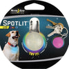 disco color niteize dog collar light