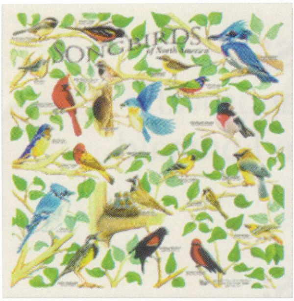 100% cotton bandana with songbirds print, 22x22 inches