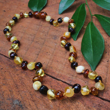 Load image into Gallery viewer, Baltic Amber Baby Beads (Mixed)