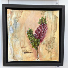 Load image into Gallery viewer, Adina I (callistemon) by Giovanna Scott