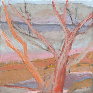 Late Afternoon Dry Riverbed by Robyn Kinsela