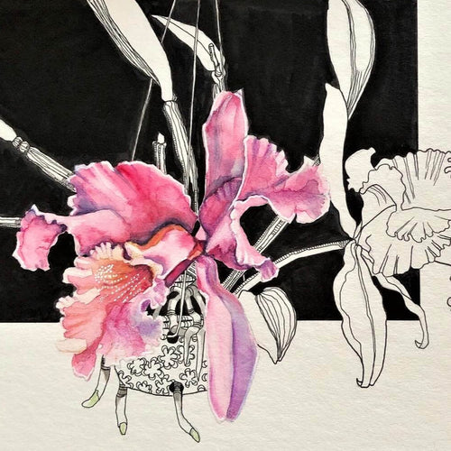 Cattleya by Wilna ten Cate
