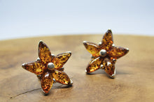 Load image into Gallery viewer, Baltic Amber Flower Stud Earrings
