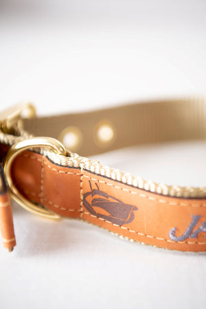 Jarrett Bay Leather Dog Collar