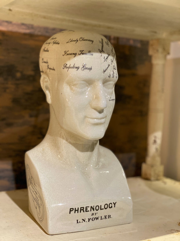Large Phrenology Head | Antiqued Ceramic