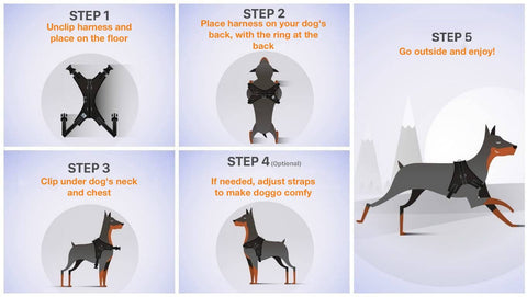 How To Put Harness On