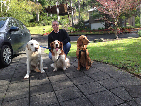Indy, Jasper, Sunny and me