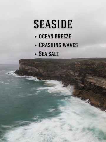 Seaside: Ocean Breeze, Crashing Waves, Sea Salt