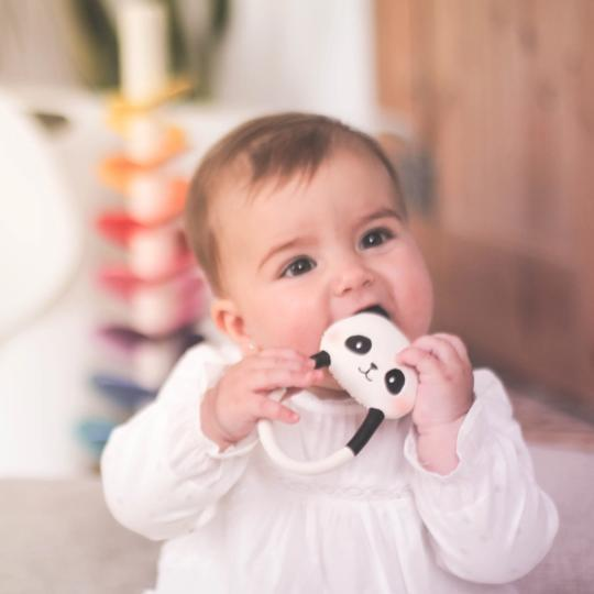 Panda teether Lanco
