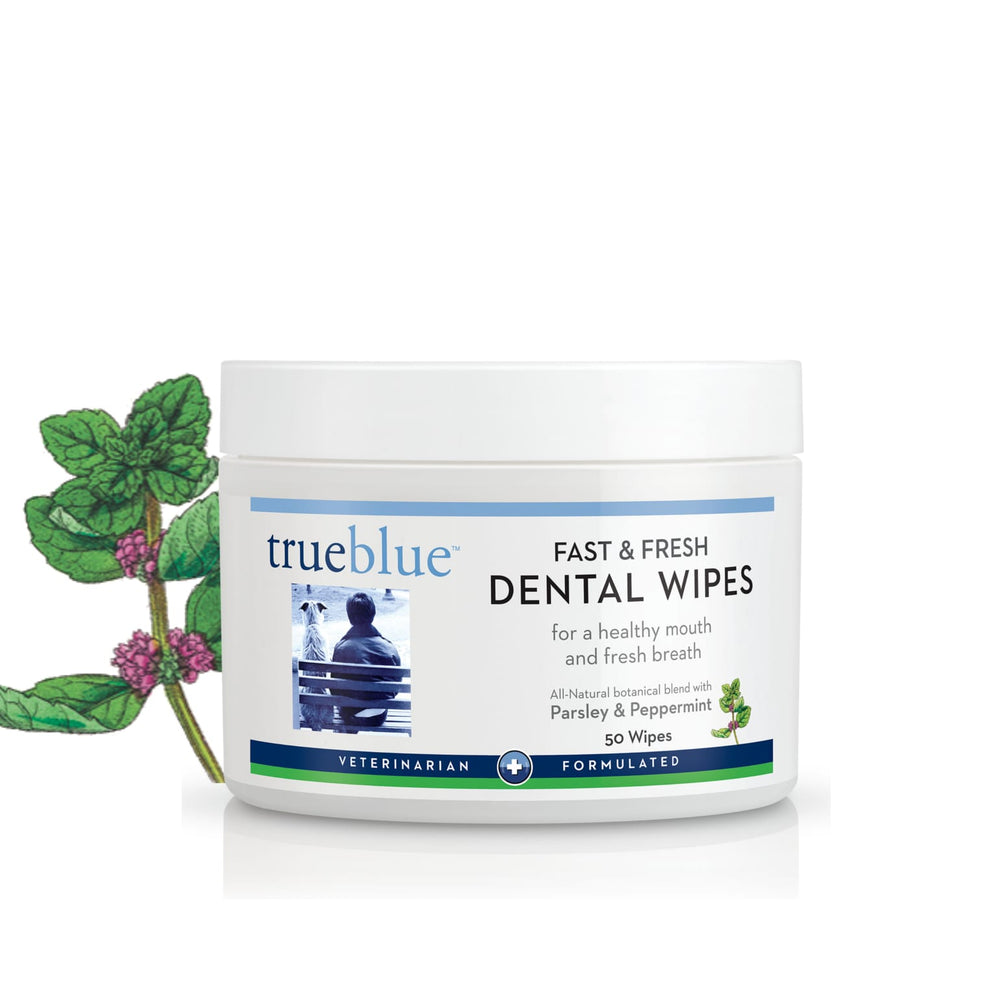Fast & Fresh Dental Wipes