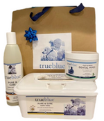 Healthy Start Puppy Wellness Kit