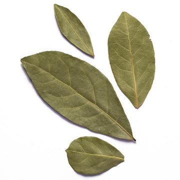 Turkish Laurel - 10gr