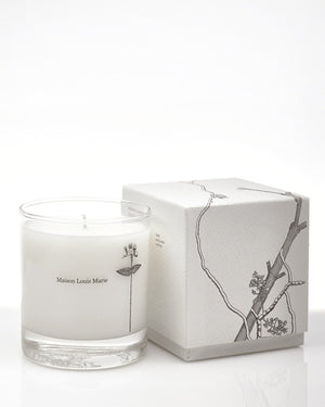 Maison Louis Marie- Antidris Lime Candle