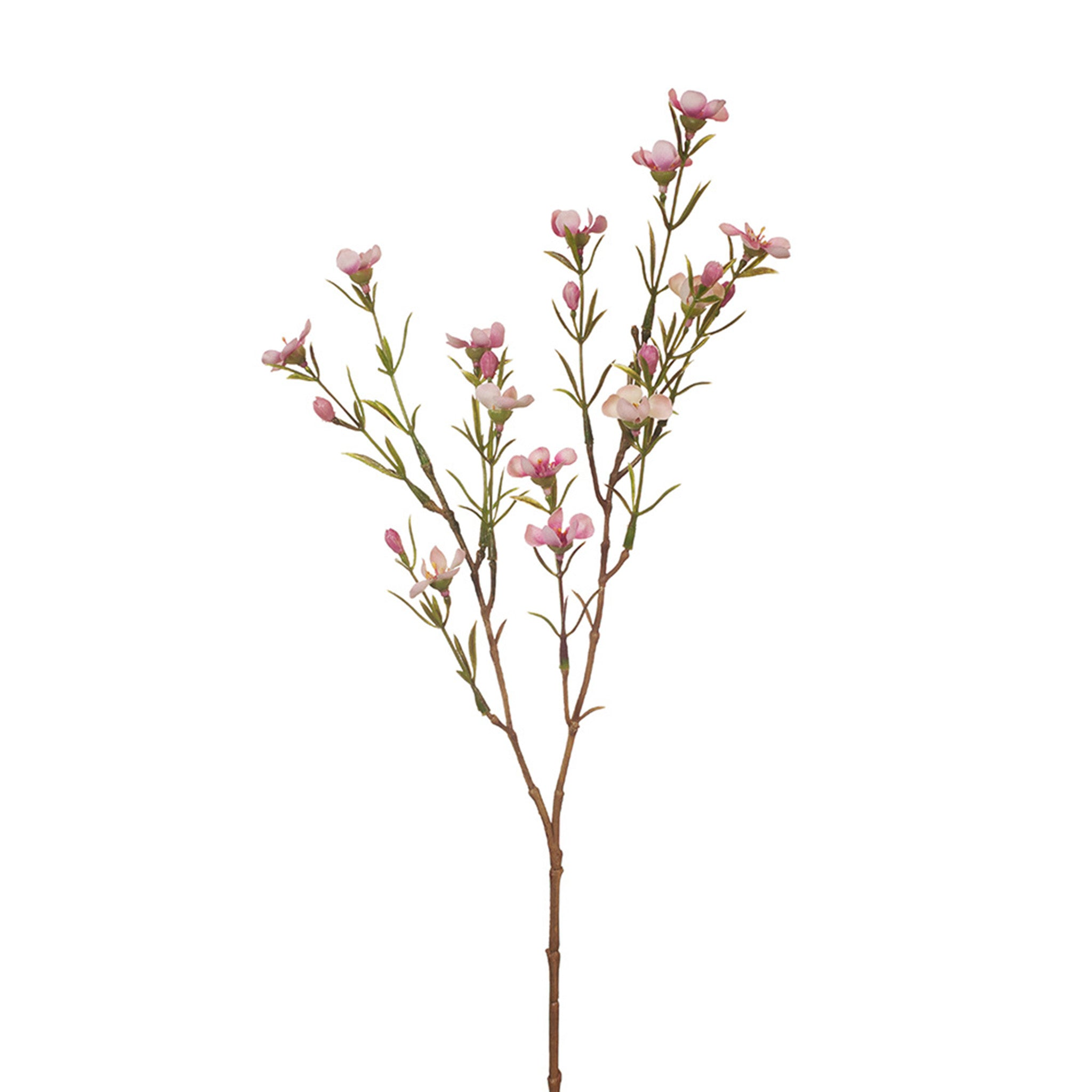 Floral Interiors, Wax Flower. This gorgeous artificial wax flower looks amazingly real. Create your own arrangement by mixing with other stems or use a large bunch of the same variety for a stunning display.  For longer lasting flower stems keep out of direct sunlight. 52cm
