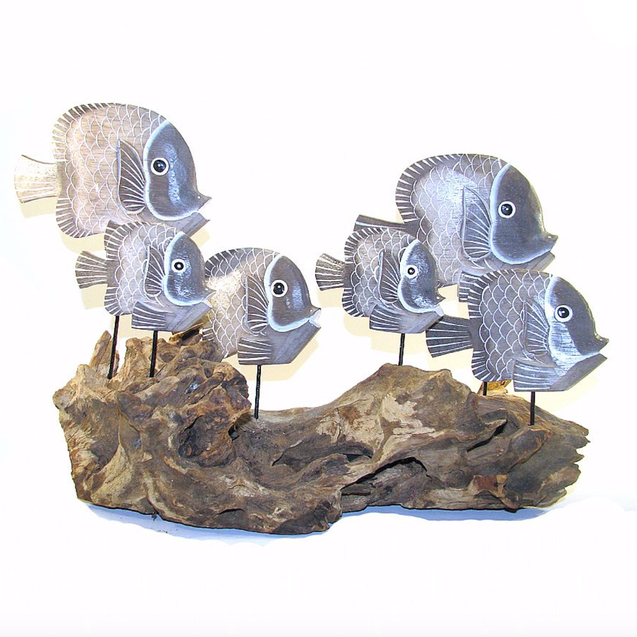 Six Fish Swimming on Driftwood