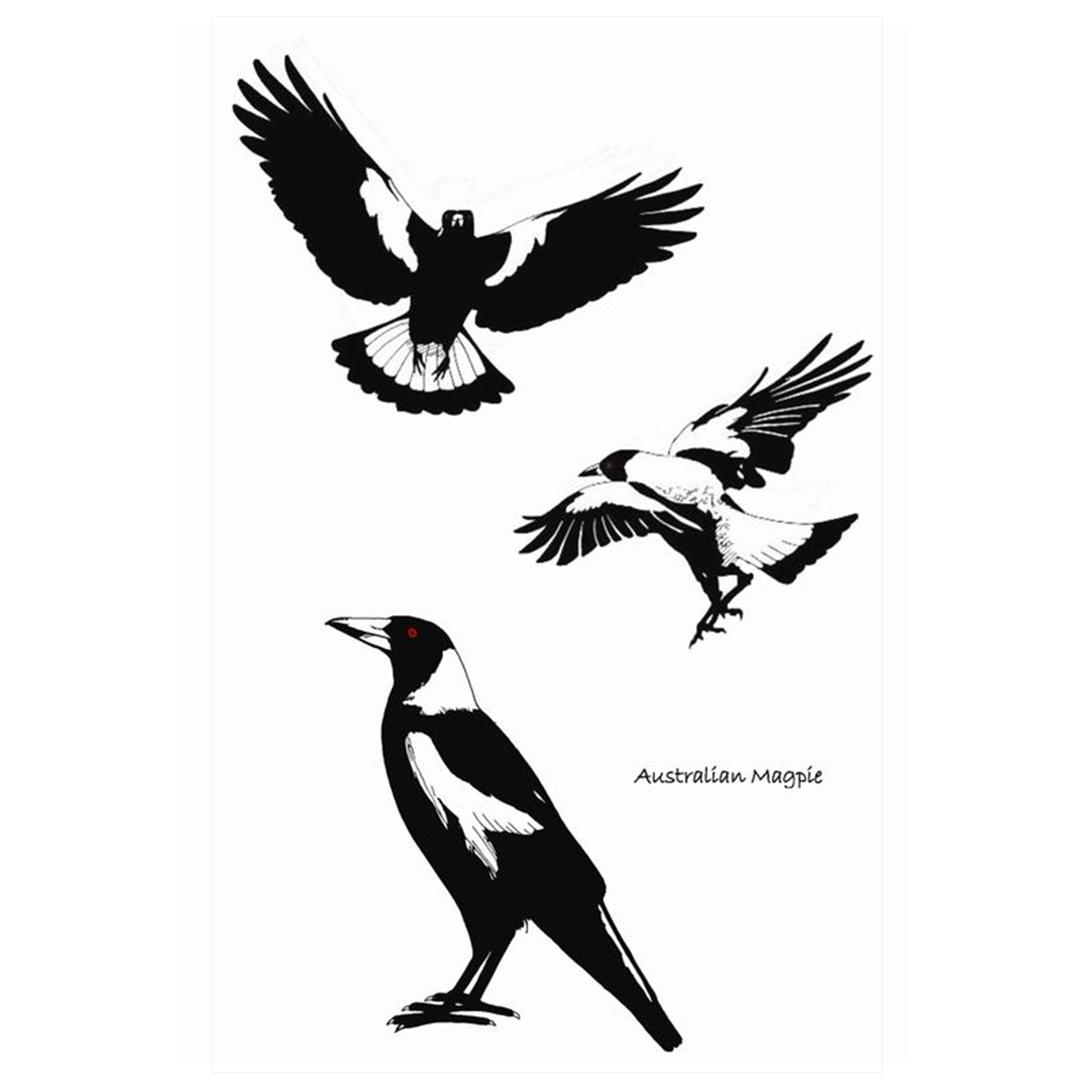 Magpie Tea Towel by all gifts australia