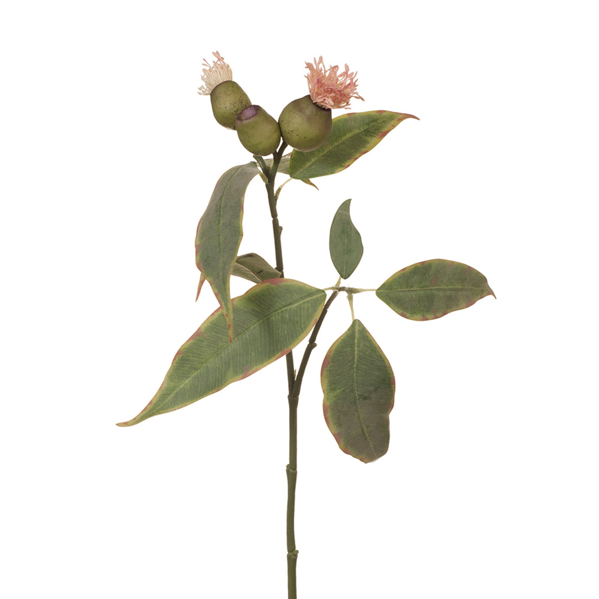 Floral Interiors, Eucalyptus Pod flowering in pink. This stunning artificial flowering eucalyptus pod looks lovely in a simple bunch or add to extra faux greenery to add a touch of colour. Keep out of direct sunlight. 50 cm.