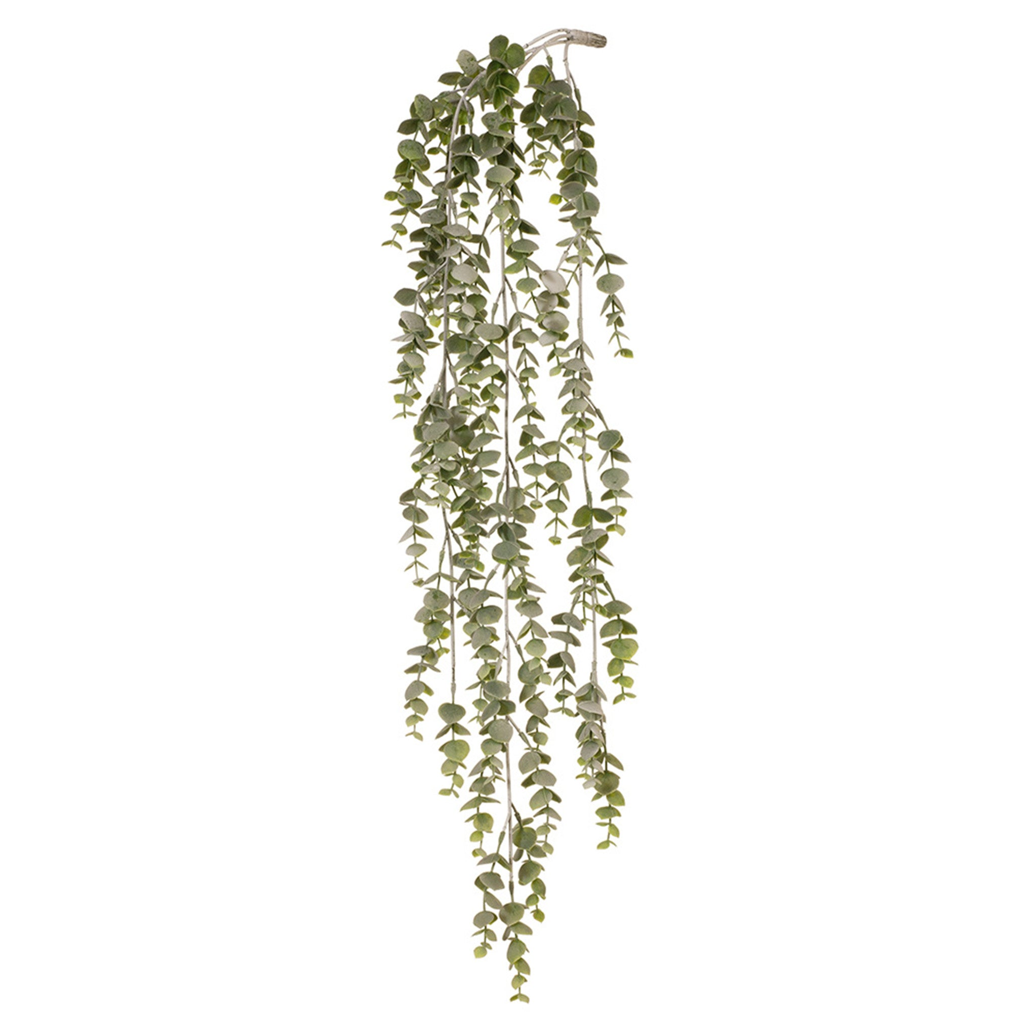 Floral Interiors, Eucalyptus Hanging Bush. This lovely hanging eucalyptus bush will add that lovely touch of greenery to your room with very little maintenance required.  (Not suitable for outdoor use). 74cm