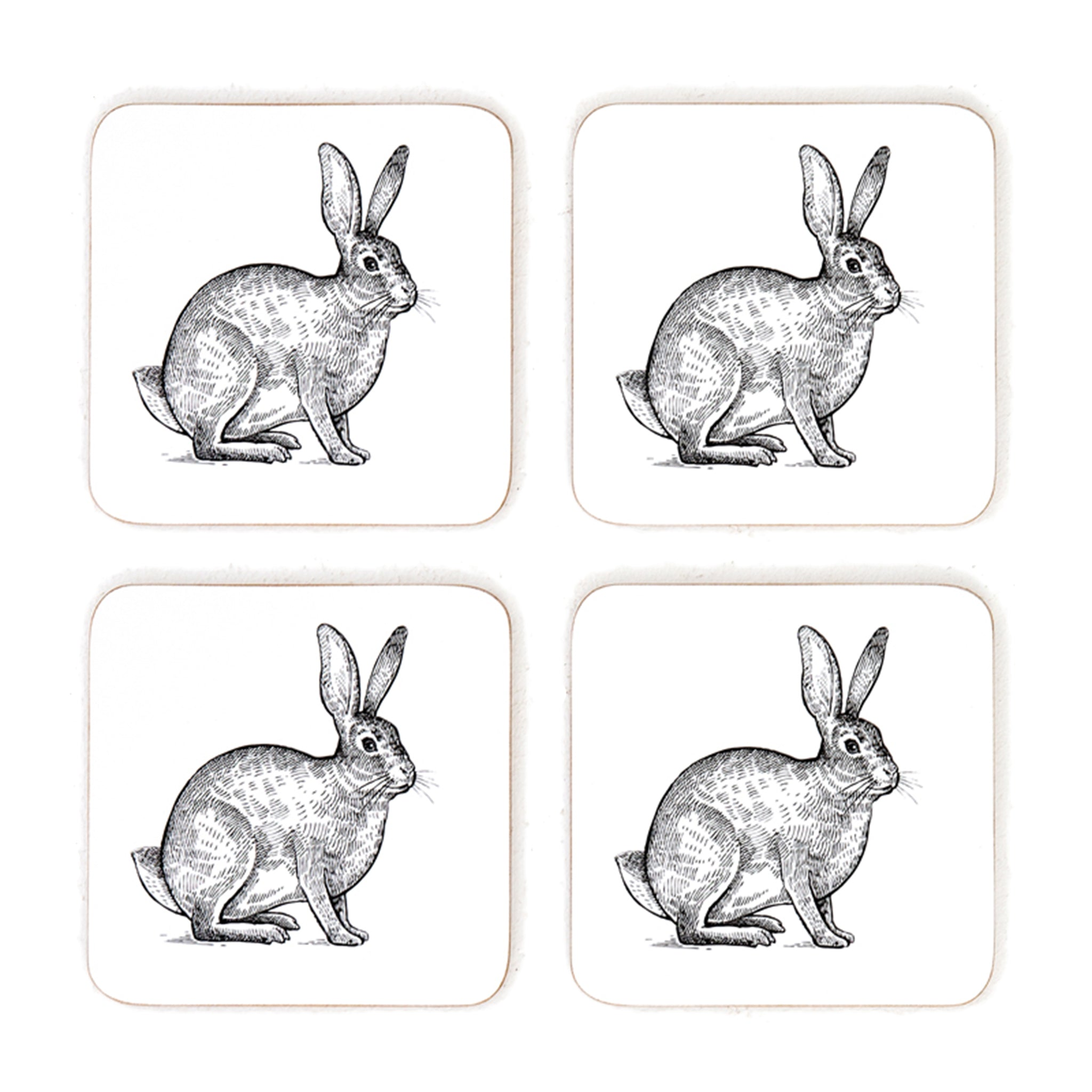 Curious Hare Coasters