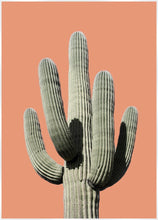 Load image into Gallery viewer, Saguaro Sunset Print