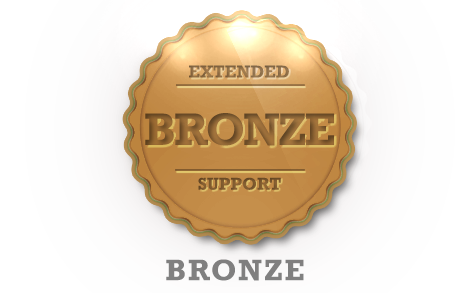 Extended Support - Bronze