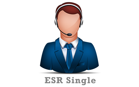 Expedited Support Response (ESR) - Single