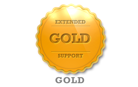 Extended Support - Gold
