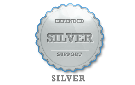 Extended Support - Silver