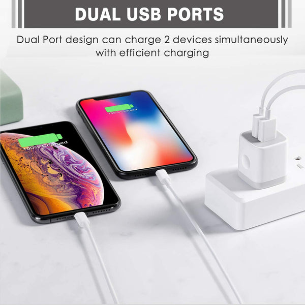 USB Wall Charger Dual port