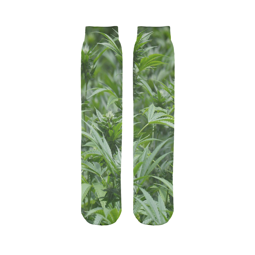 All over print cannabis bud weed Sublimation Tube Sock