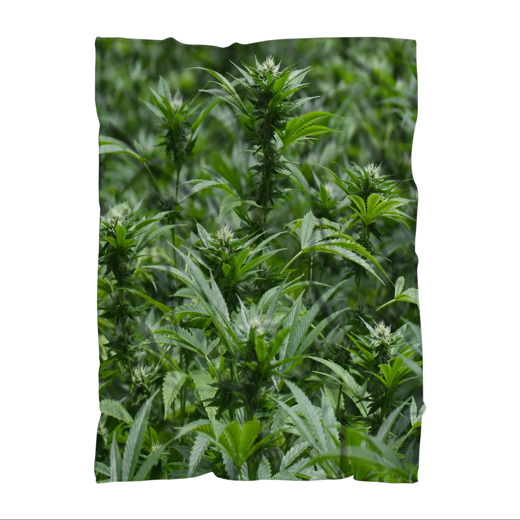 All over print cannabis bud weed Sublimation Throw Blanket