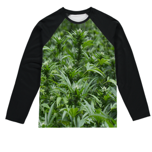 All over print cannabis bud weed Sublimation Baseball Long Sleeve T-Shirt