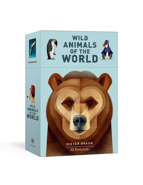 WILD ANIMALS OF THE WORLD 50 Postcards
