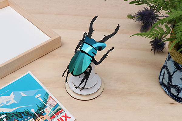 Stag Beetle Small