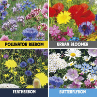 Birds, Bees & Butterflies Seedbom (Set of 4)