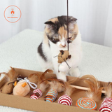The 7 Day Toy Box For Cats