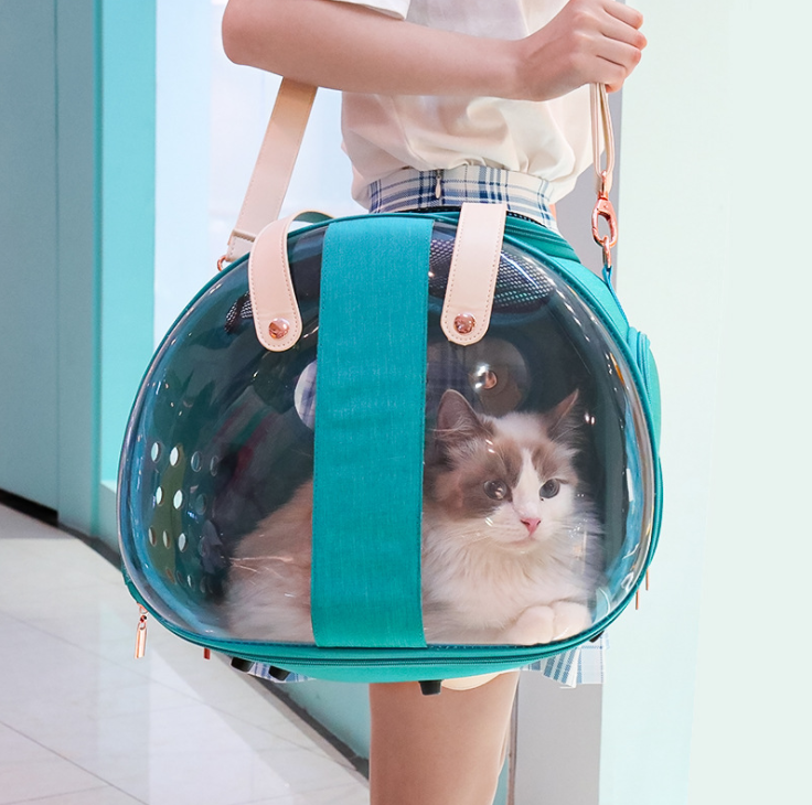 The Bean Bubble Kitten Carrier