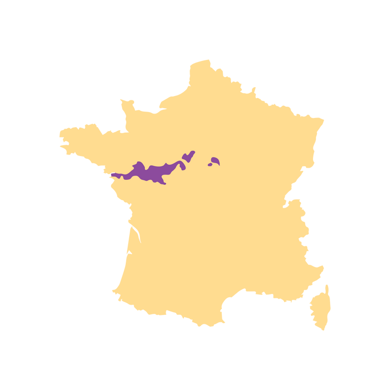 SimplyWine.com Region Map for Loire Valley, France
