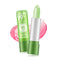 1PC Protect Lips Care Lipstick Moisture Lip Balm Natural Aloe Vera