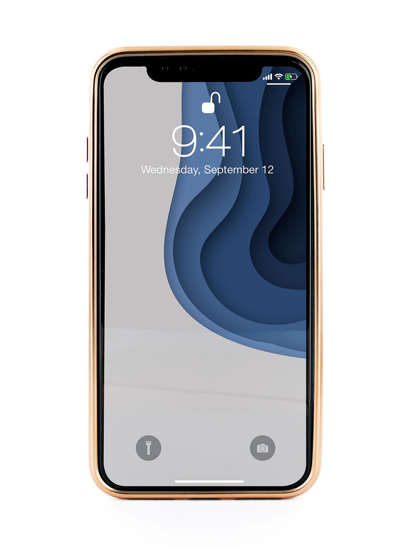 Front image of the Ted Baker Apple iPhone XR phone case in Pink