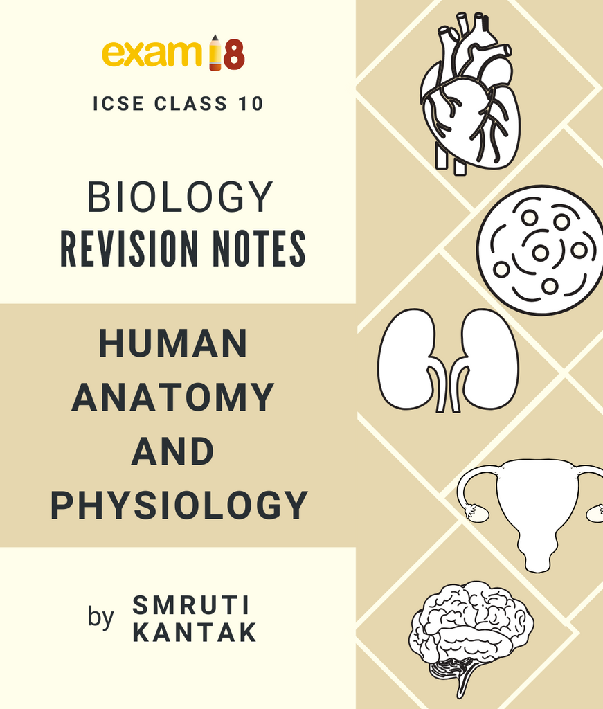 ICSE Biology Chapter-wise Revision Notes for Class 10