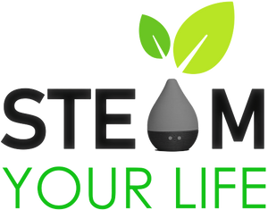 Steam Your Life