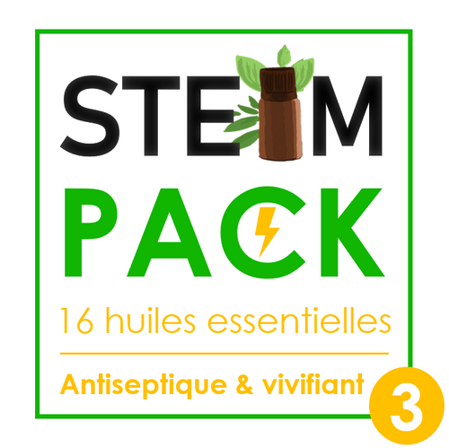 Steam-Pack 3 : Antiseptique & vivifiant