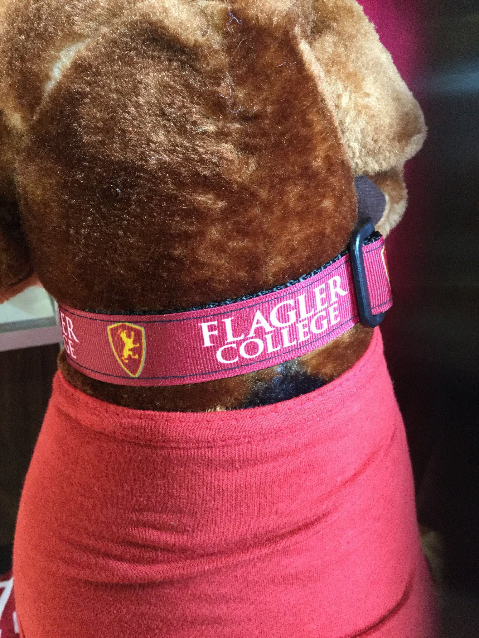 red dog collar with Flagler college printed in white and shield printed in red and yellow