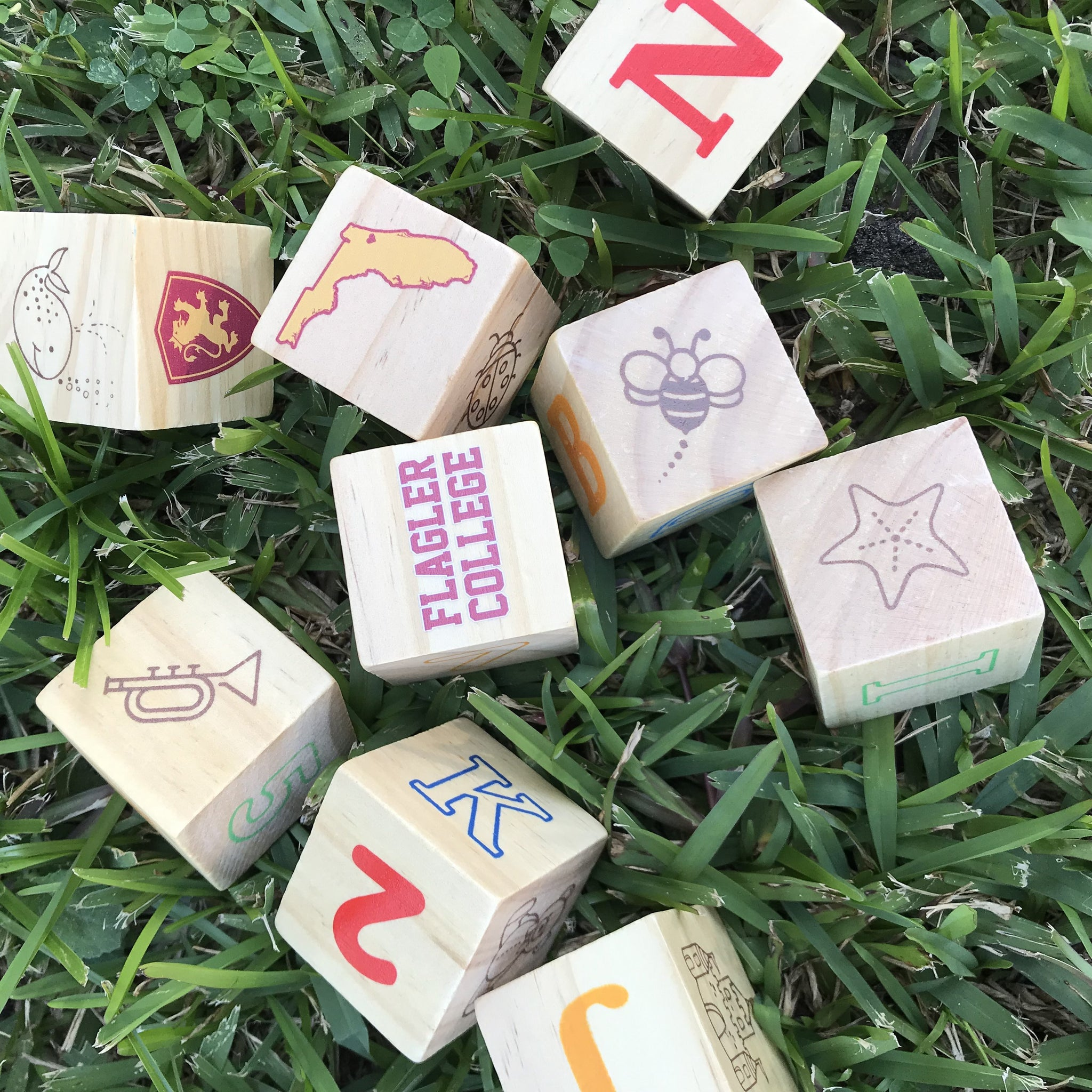set of 9 wooden blocks with themes of flagler college in red and gold on them